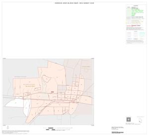 Primary view of object titled '2000 Census County Subdivison Block Map: Big Sandy CCD, Texas, Inset A01'.