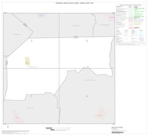 Primary view of object titled '2000 Census County Subdivison Block Map: Moulton CCD, Texas, Index'.