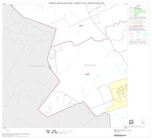 Primary view of object titled '2000 Census County Subdivison Block Map: Liberty Hill-Cedar Park CCD, Texas, Block 10'.