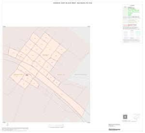 Primary view of object titled '2000 Census County Subdivison Block Map: Buckholts CCD, Texas, Inset A01'.