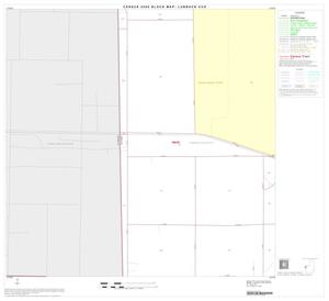 Primary view of object titled '2000 Census County Subdivison Block Map: Lubbock CCD, Texas, Block 19'.