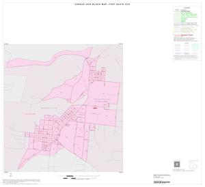 Primary view of object titled '2000 Census County Subdivison Block Map: Fort Davis CCD, Texas, Inset A01'.