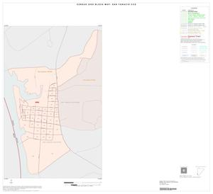 Primary view of object titled '2000 Census County Subdivison Block Map: San Ygnacio CCD, Texas, Inset A01'.