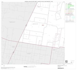 Primary view of object titled '2000 Census County Subdivison Block Map: Puerto Rico-San Manuel CCD, Texas, Block 4'.