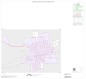 Primary view of object titled '2000 Census County Subdivison Block Map: Sabinal CCD, Texas, Inset B01'.
