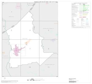 Primary view of object titled '2000 Census County Subdivison Block Map: Bay City CCD, Texas, Index'.