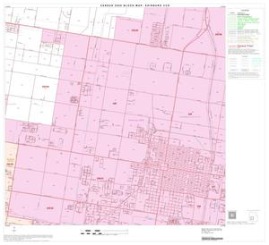 Primary view of object titled '2000 Census County Subdivison Block Map: Edinburg CCD, Texas, Block 10'.