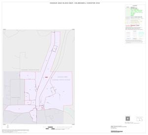 Primary view of object titled '2000 Census County Subdivison Block Map: Colmesneil-Chester CCD, Texas, Inset A01'.