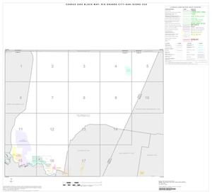 Primary view of object titled '2000 Census County Subdivison Block Map: Rio Grande City-San Isidro CCD, Texas, Index'.