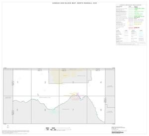 Primary view of object titled '2000 Census County Subdivison Block Map: North Randall CCD, Texas, Index'.