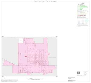 Primary view of object titled '2000 Census County Subdivison Block Map: Muenster CCD, Texas, Inset A01'.