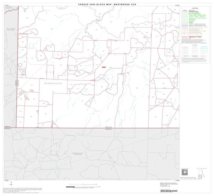 2000 Census County Subdivison Block Map Westbrook CCD Texas Block