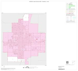 Primary view of object titled '2000 Census County Subdivison Block Map: Haskell CCD, Texas, Inset A01'.