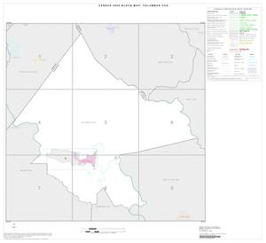 Primary view of object titled '2000 Census County Subdivison Block Map: Columbus CCD, Texas, Index'.