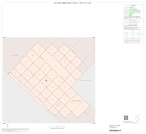 Primary view of object titled '2000 Census County Subdivison Block Map: Bay City CCD, Texas, Inset A01'.