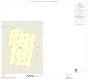 Primary view of object titled '2000 Census County Subdivison Block Map: McAllen-Pharr CCD, Texas, Inset B01'.