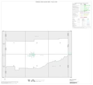 Primary view of object titled '2000 Census County Subdivison Block Map: Tulia CCD, Texas, Index'.