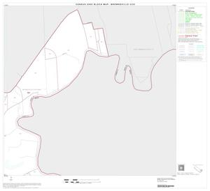 Primary view of object titled '2000 Census County Subdivison Block Map: Brownsville CCD, Texas, Block 17'.