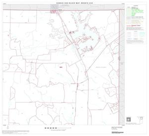 Primary view of object titled '2000 Census County Subdivison Block Map: Bronte CCD, Texas, Block 2'.