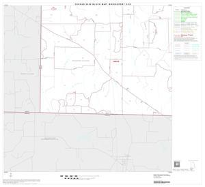 Primary view of 2000 Census County Subdivison Block Map: Bridgeport CCD, Texas, Block 12