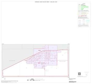 Primary view of object titled '2000 Census County Subdivison Block Map: Idalou CCD, Texas, Inset A01'.