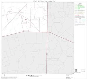 Primary view of object titled '2000 Census County Subdivison Block Map: Winters CCD, Texas, Block 8'.