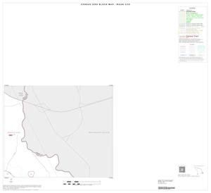 Primary view of object titled '2000 Census County Subdivison Block Map: Iraan CCD, Texas, Inset B02'.