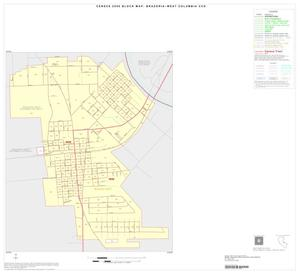 Primary view of object titled '2000 Census County Subdivison Block Map: Brazoria-West Columbia CCD, Texas, Inset C01'.