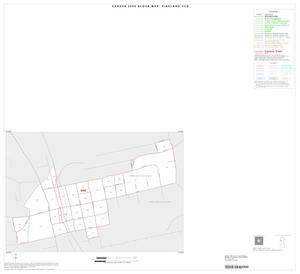 Primary view of object titled '2000 Census County Subdivison Block Map: Pineland CCD, Texas, Inset A01'.