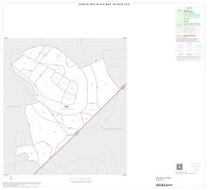 Primary view of object titled '2000 Census County Subdivison Block Map: Blanco CCD, Texas, Inset B01'.