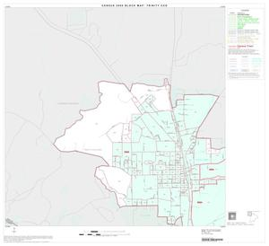 Primary view of object titled '2000 Census County Subdivison Block Map: Trinity CCD, Texas, Block 1'.