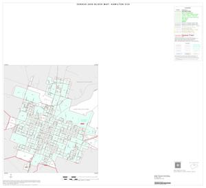 Primary view of object titled '2000 Census County Subdivison Block Map: Hamilton CCD, Texas, Inset A01'.