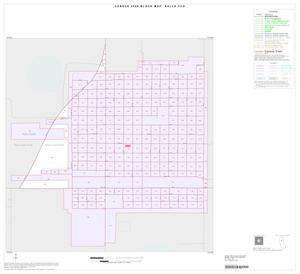 Primary view of object titled '2000 Census County Subdivison Block Map: Ralls CCD, Texas, Inset A01'.