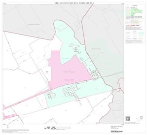 Primary view of object titled '2000 Census County Subdivison Block Map: McGregor CCD, Texas, Block 3'.