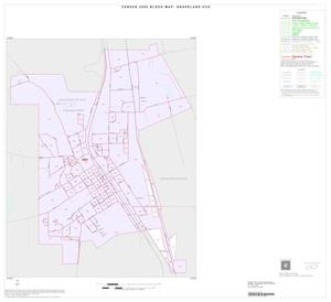 Primary view of object titled '2000 Census County Subdivison Block Map: Grapeland CCD, Texas, Inset A01'.