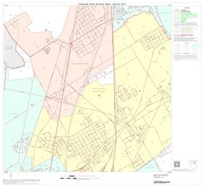 Primary view of object titled '2000 Census County Subdivison Block Map: Waco CCD, Texas, Block 11'.