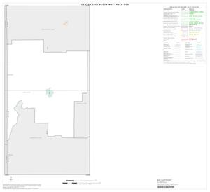 Primary view of object titled '2000 Census County Subdivison Block Map: Rule CCD, Texas, Index'.