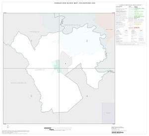 Primary view of object titled '2000 Census County Subdivison Block Map: Coldspring CCD, Texas, Index'.