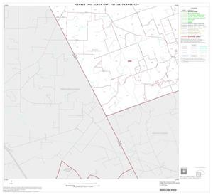 Primary view of object titled '2000 Census County Subdivison Block Map: Pettus-Pawnee CCD, Texas, Block 3'.