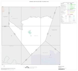 Primary view of object titled '2000 Census County Subdivison Block Map: Blanco CCD, Texas, Index'.