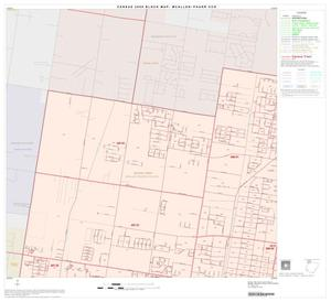 Primary view of object titled '2000 Census County Subdivison Block Map: McAllen-Pharr CCD, Texas, Block 1'.