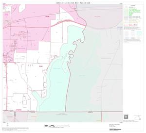 Primary view of object titled '2000 Census County Subdivison Block Map: Plano CCD, Texas, Block 20'.