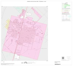 Primary view of object titled '2000 Census County Subdivison Block Map: Pearsall CCD, Texas, Inset A01'.