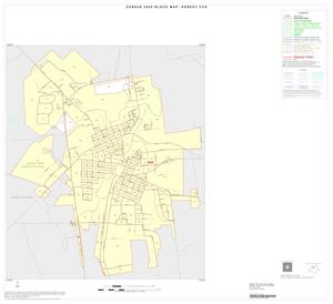 Primary view of object titled '2000 Census County Subdivison Block Map: Kenedy CCD, Texas, Inset A01'.