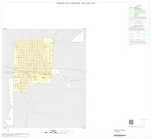 Primary view of object titled '2000 Census County Subdivison Block Map: Big Lake CCD, Texas, Inset A01'.