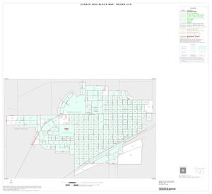 Primary view of object titled '2000 Census County Subdivison Block Map: Friona CCD, Texas, Inset A01'.
