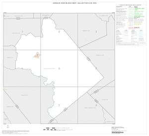 Primary view of object titled '2000 Census County Subdivison Block Map: Hallettsville CCD, Texas, Index'.