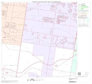 Primary view of object titled '2000 Census County Subdivison Block Map: McAllen-Pharr CCD, Texas, Block 12'.