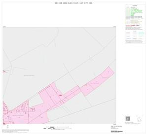 Primary view of object titled '2000 Census County Subdivison Block Map: Bay City CCD, Texas, Inset B02'.