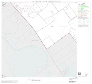 Primary view of object titled '2000 Census County Subdivison Block Map: Kamey-Six Mile CCD, Texas, Block 3'.